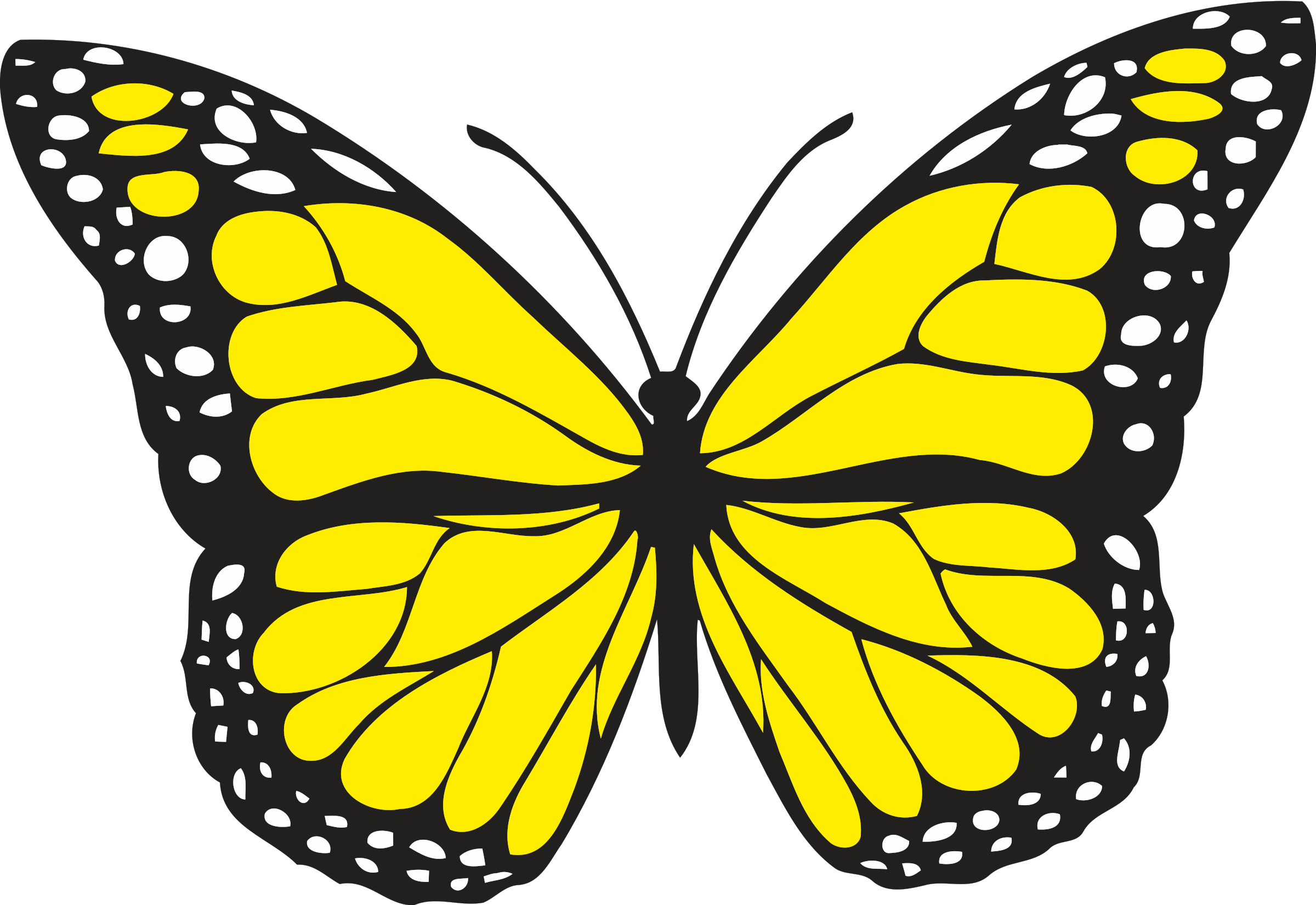 Colour big image png. 1 clipart butterfly