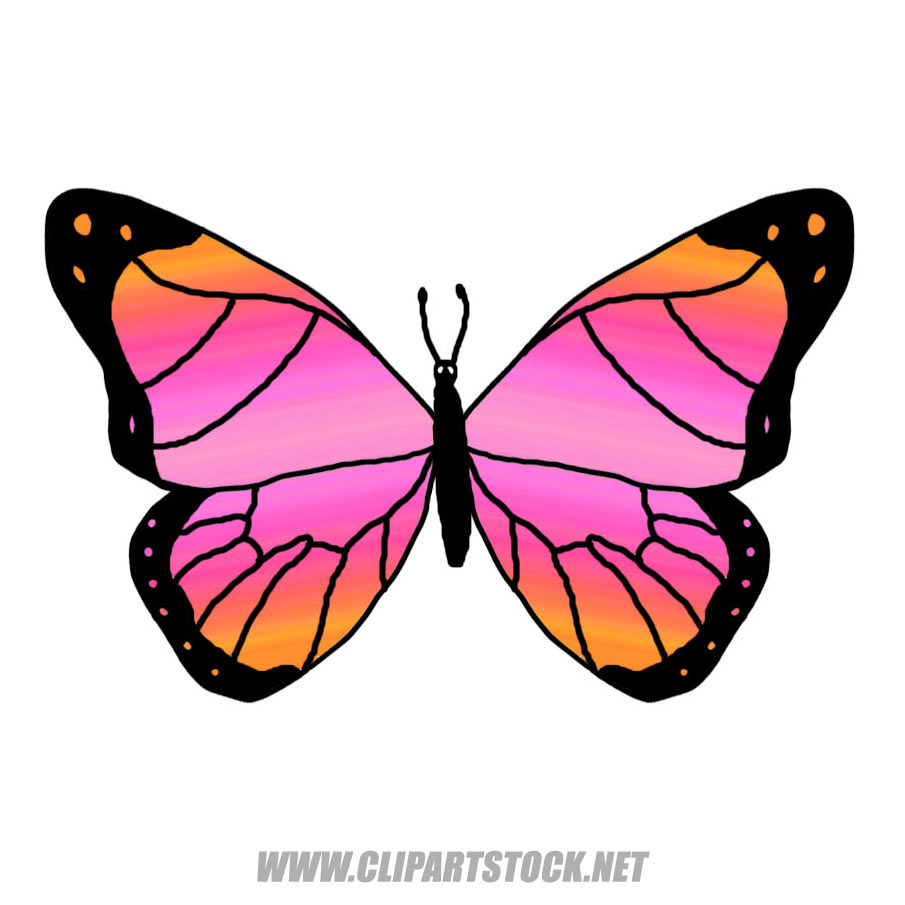 1 clipart butterfly. Stock weblog colorful