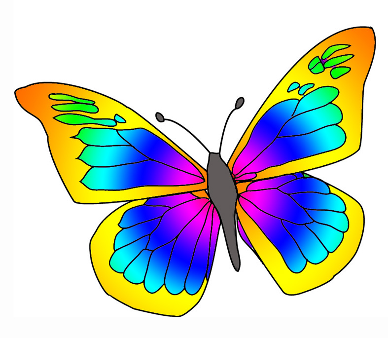 Colorful . Clipart butterfly number