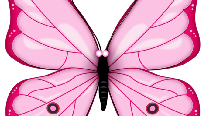 1 clipart butterfly. Best free colorful images