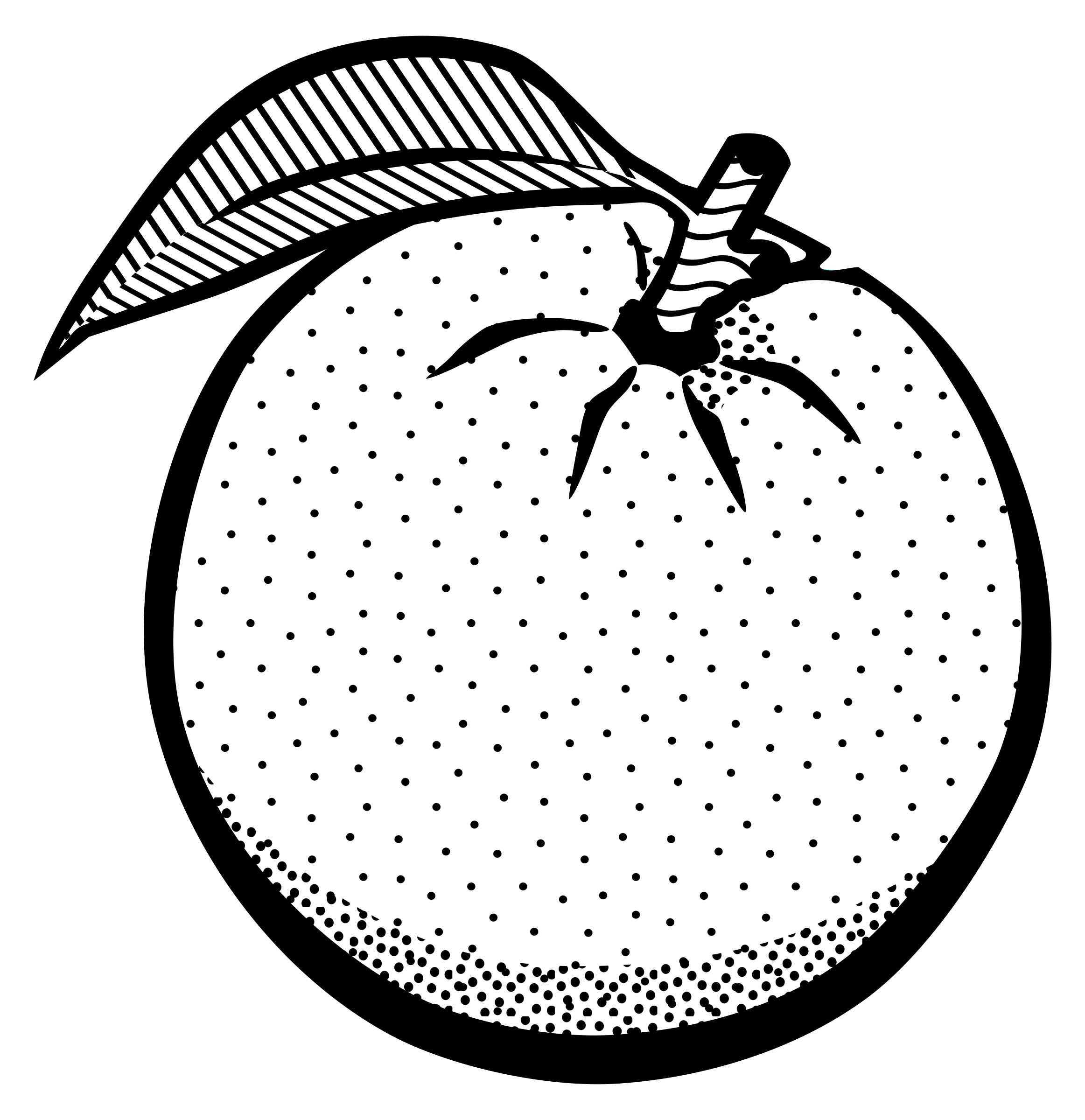 Black and white orange. Pear clipart line drawing