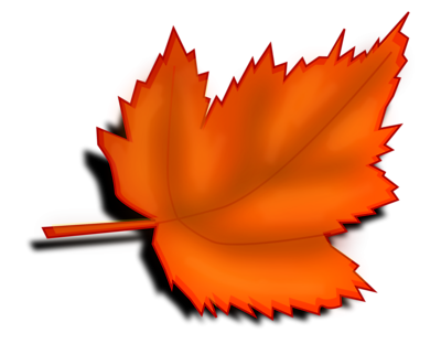 Fall leaves . 1 clipart transparent background