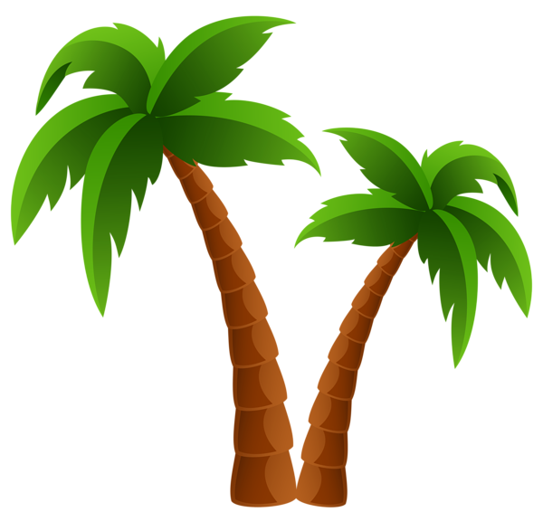 Two trees png image. 2 clipart palm tree