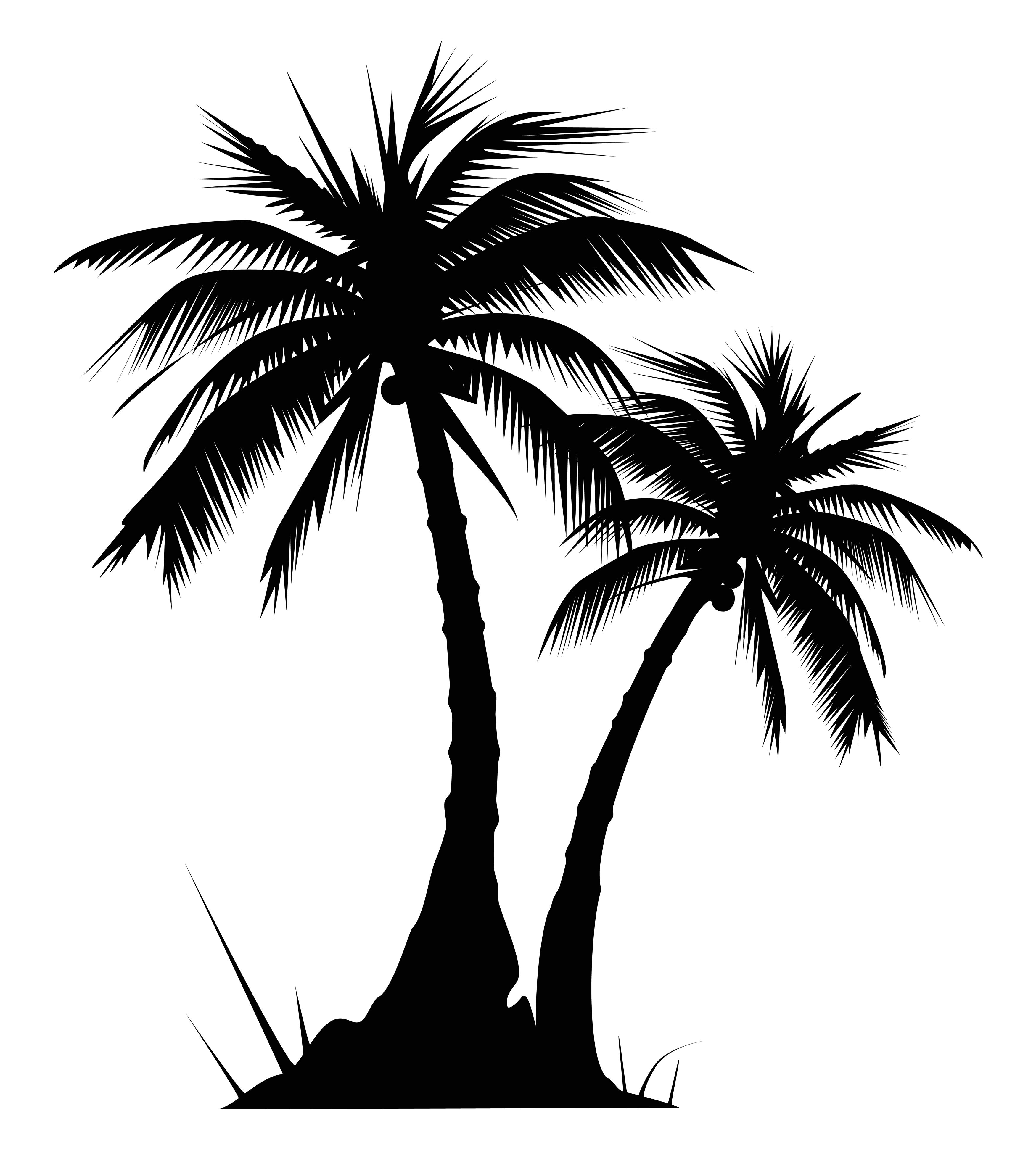 100 clipart palm tree. Clip art black and