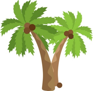 Image trees with coconuts. 2 clipart palm tree