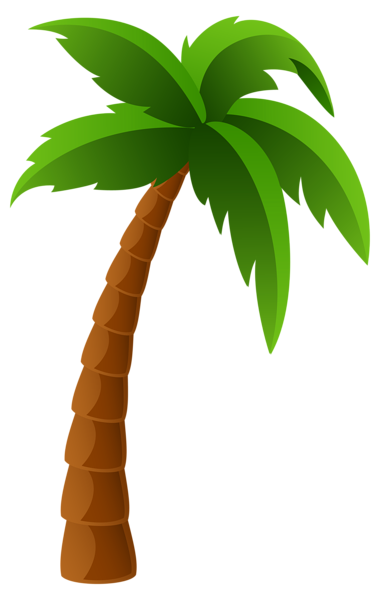 2 clipart palm tree. Png image graphics pinterest