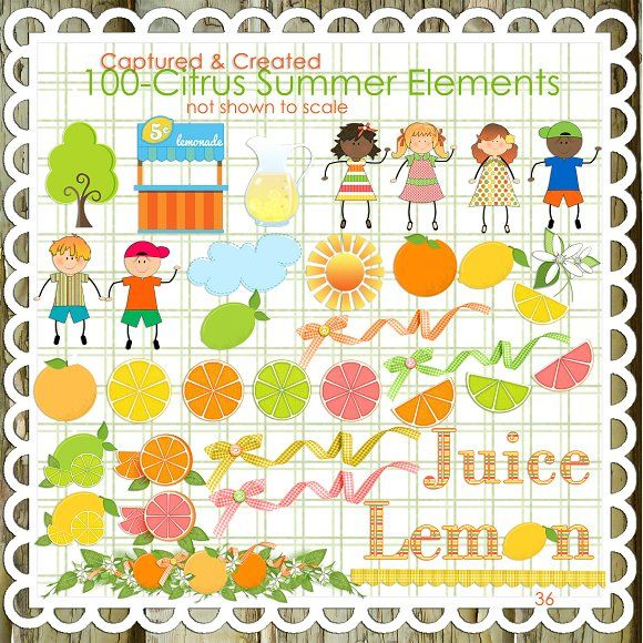citrus summer elements. 100 clipart perfect