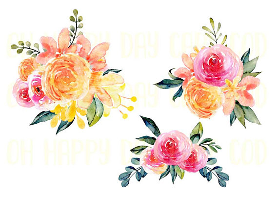 Pink rose flower watercolor. 100 clipart swag
