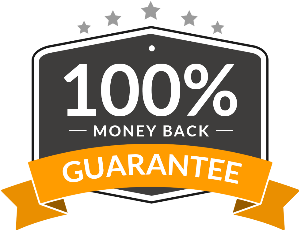 Ignite digital business system. 100 money back guarantee png