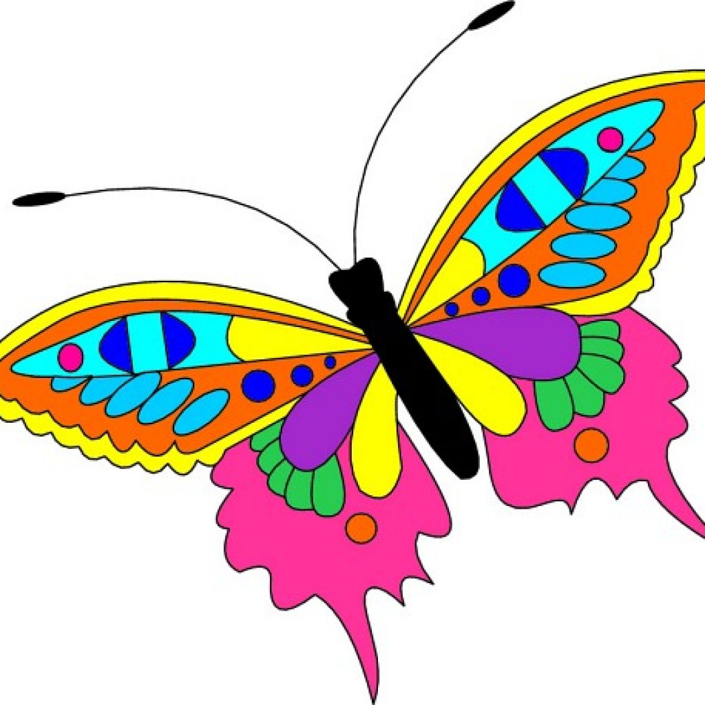 2 clipart butterfly. Free hatenylo com images