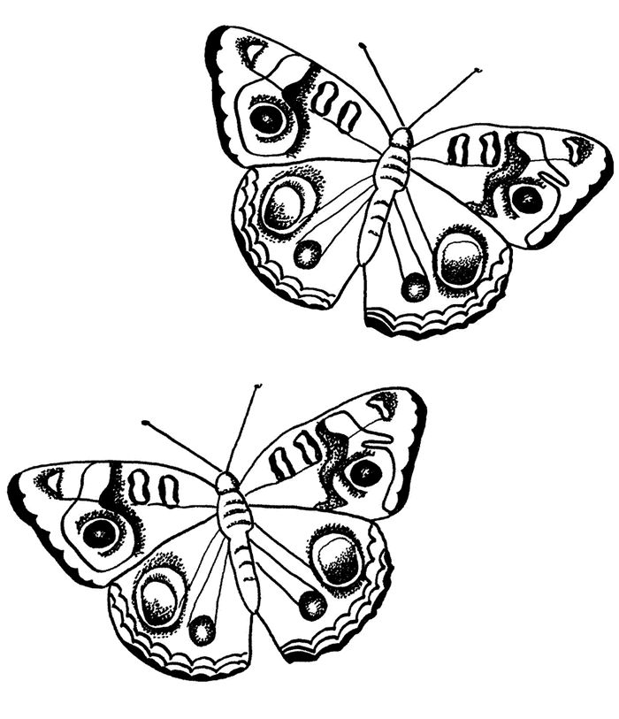 best applique patterns. 2 clipart butterfly