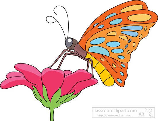 Animal getting nectar flower. 2 clipart butterfly