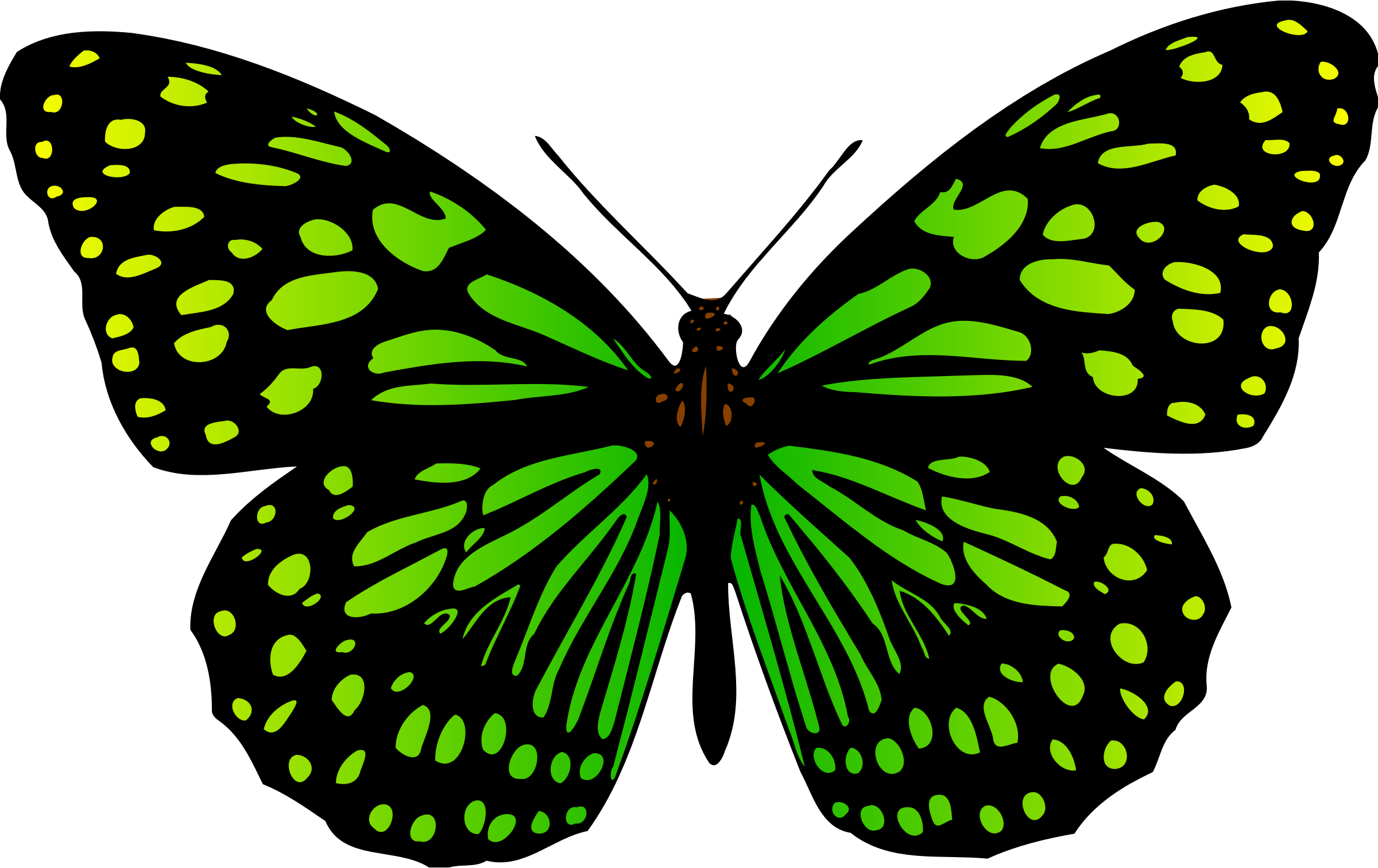 2 clipart butterfly. Colour big image png
