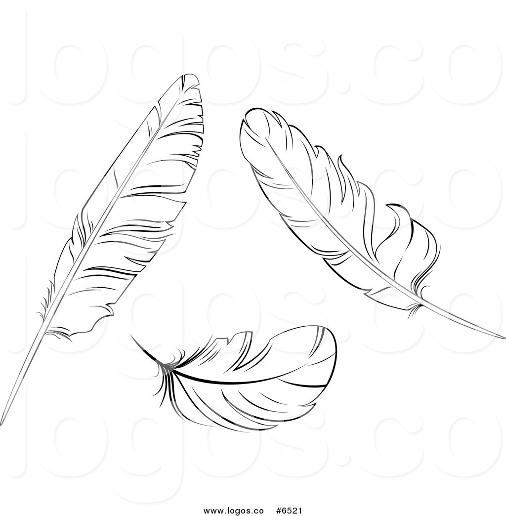 Awesome feathers gallery digital. 2 clipart feather