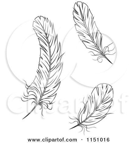2 clipart feather. Of black and white