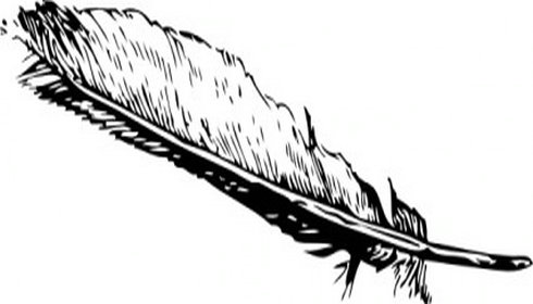 Free images cliparting com. 2 clipart feather