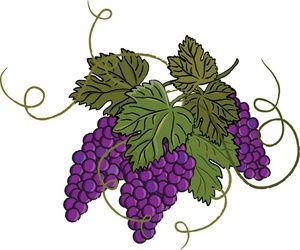 Grapes clipart illustration. Grape free clip art