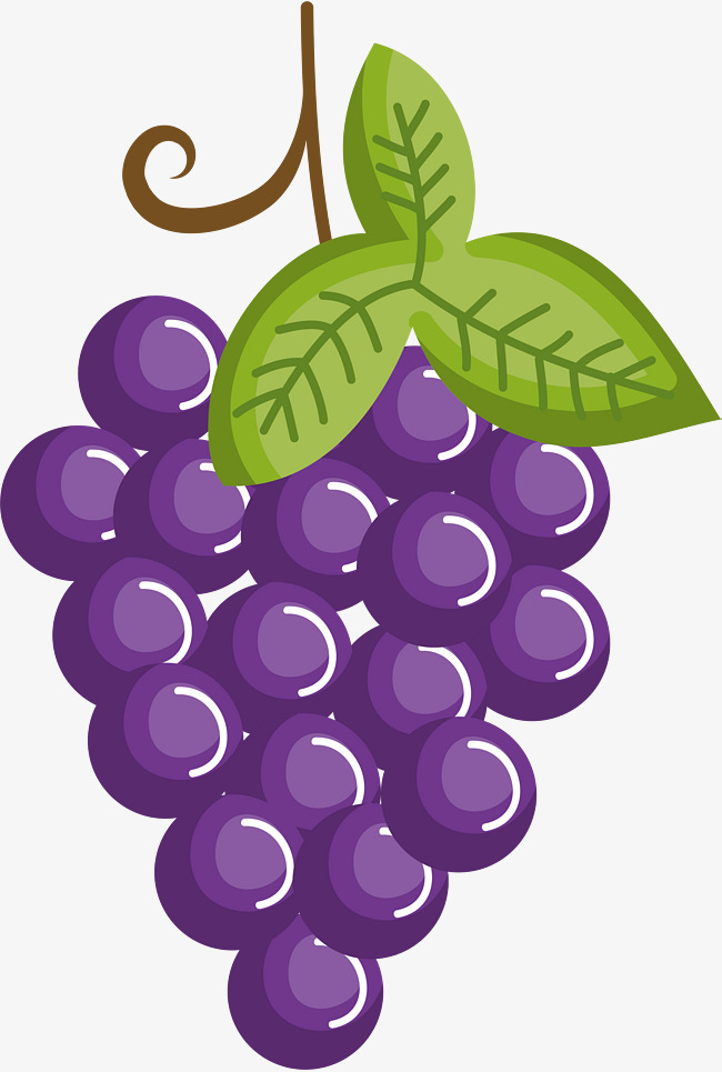 Purple cartoon grapes png. 2 clipart grape