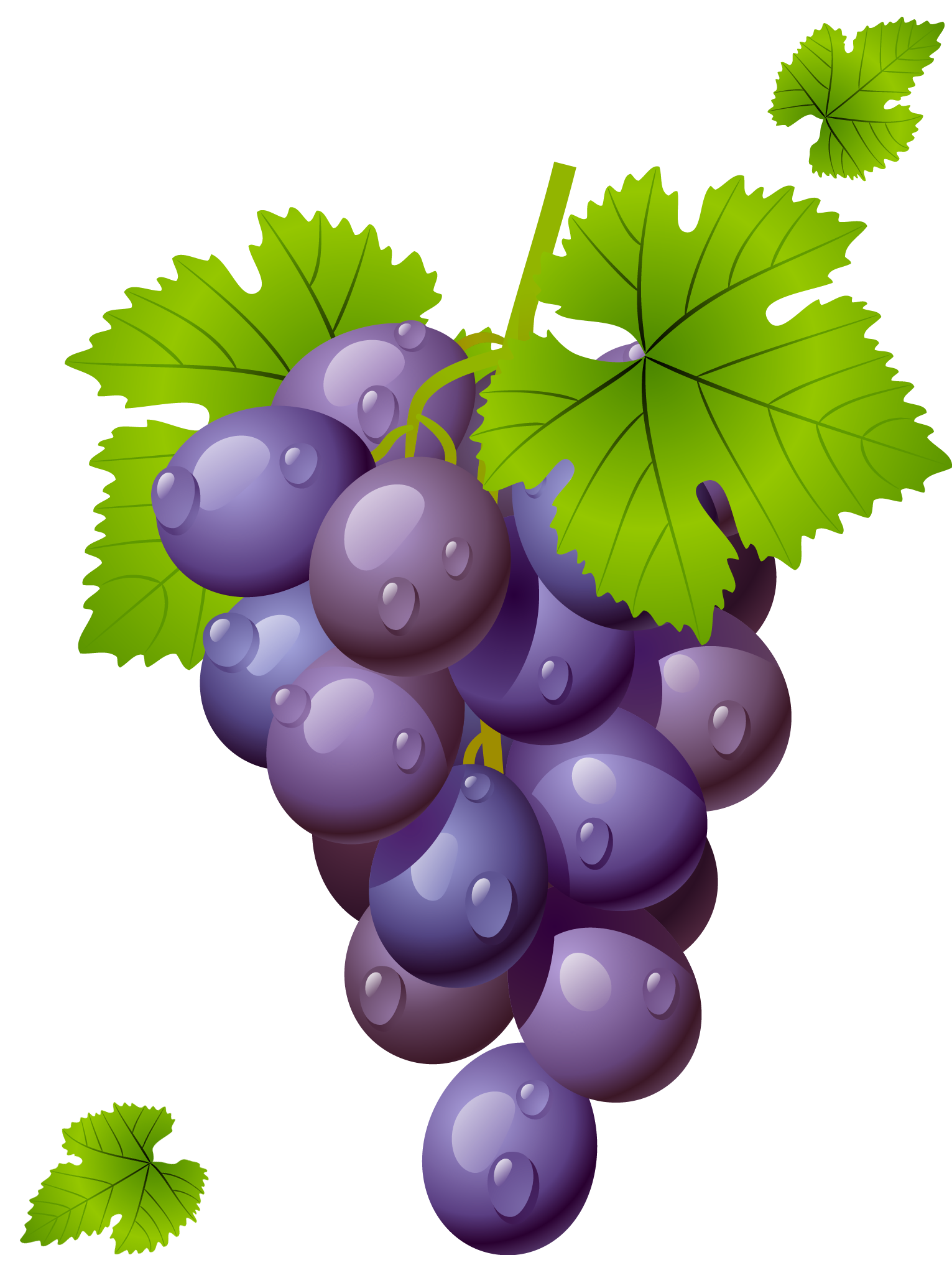 2 clipart grape. Grapes grapeclipart fruit clip
