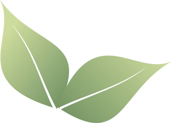 2 clipart leaf. Two leaves clip art