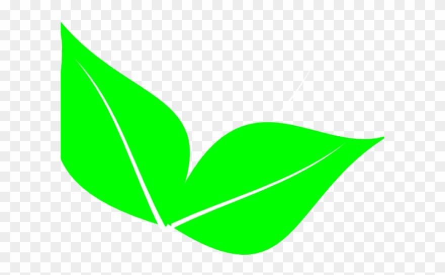 2 clipart leaf. Foliage leaves clip art