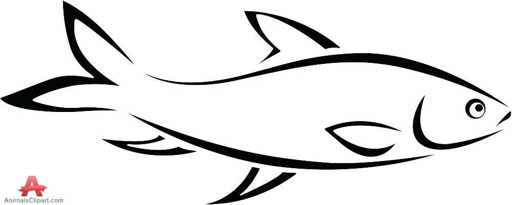 Of fish wikiclipart free. 2 clipart outline