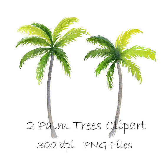 Watercolor tropical png instant. 2 clipart palm tree