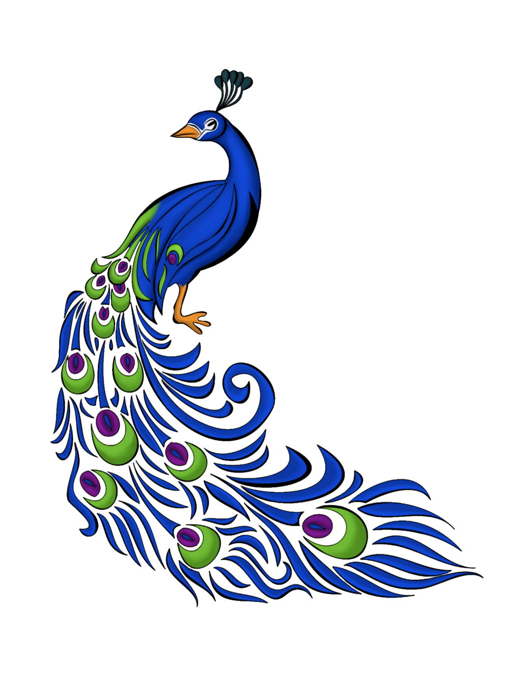 Peacock vector graphics and. Clipart free feather