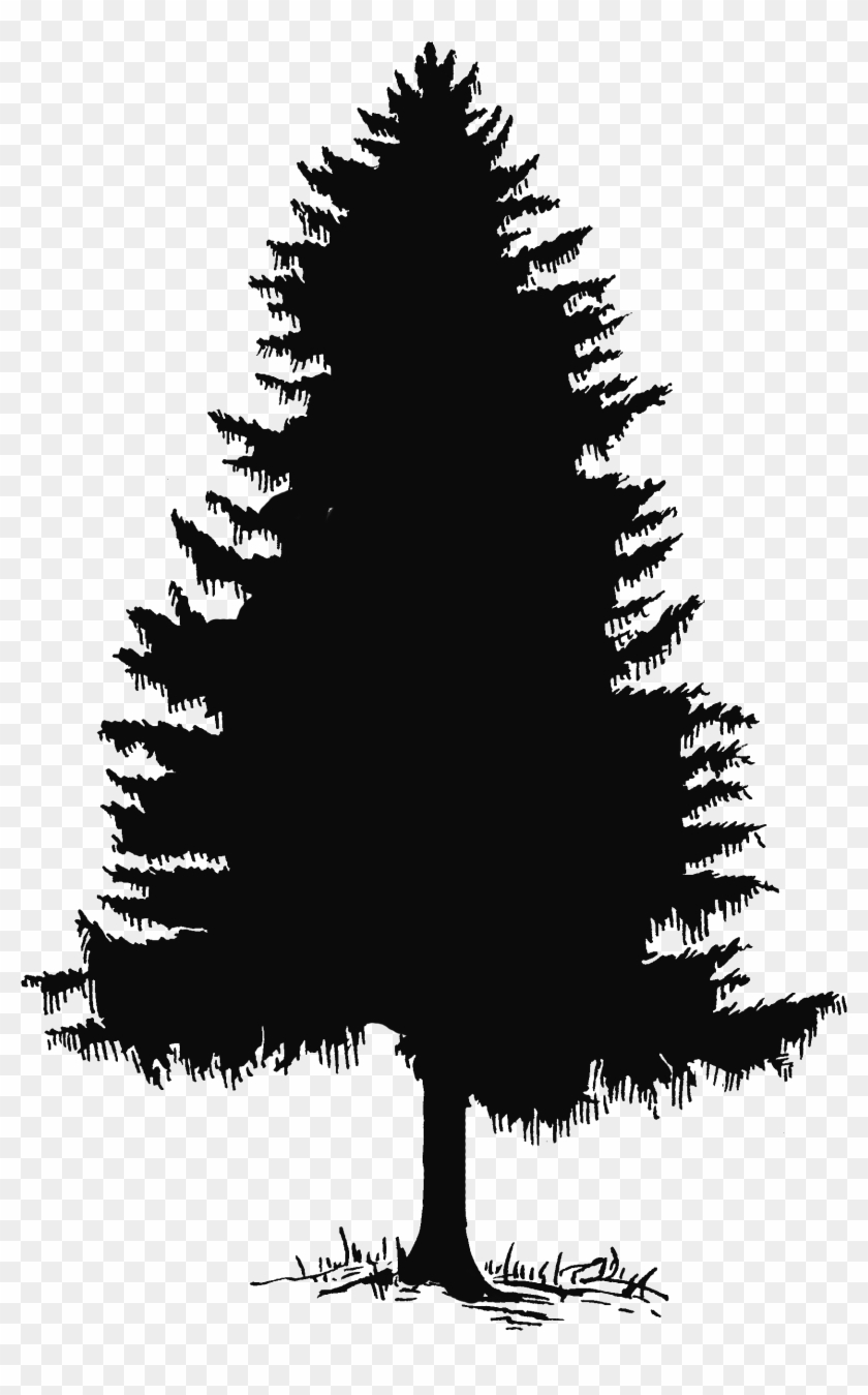 Silhouette and clip art. 2 clipart pine tree