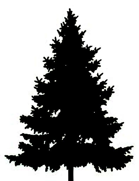 2 clipart pine tree. Best clipartion com forest