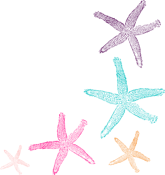 Prints clip art at. 2 clipart starfish