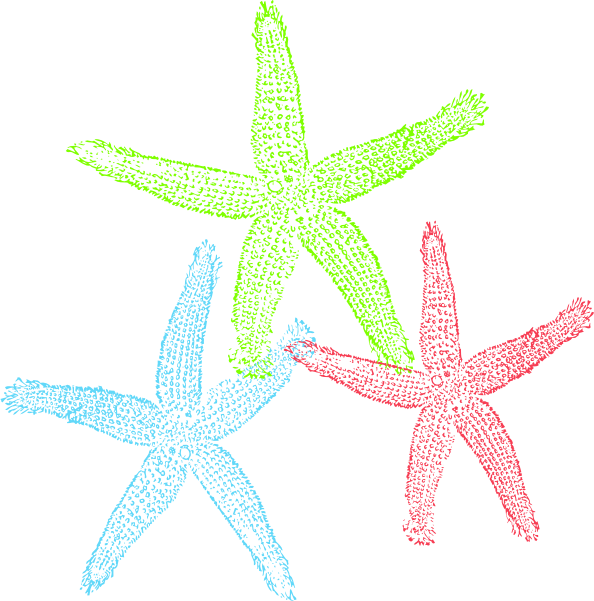 2 clipart starfish. Public domain