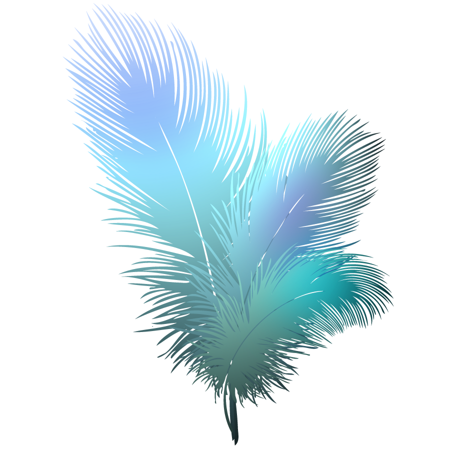 Png transparent background station. Feather clipart