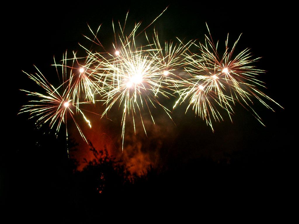 Image animated gif fireworks. 2016 clipart diwali
