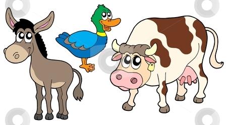 3 clipart animal. Farm animals collection stock