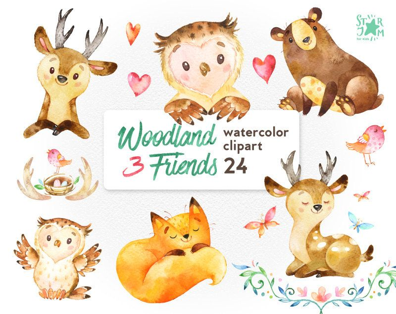 Woodland friends watercolor animals. 3 clipart animal