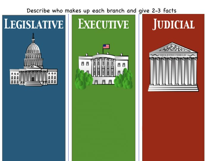 3 clipart branch.  branches of government