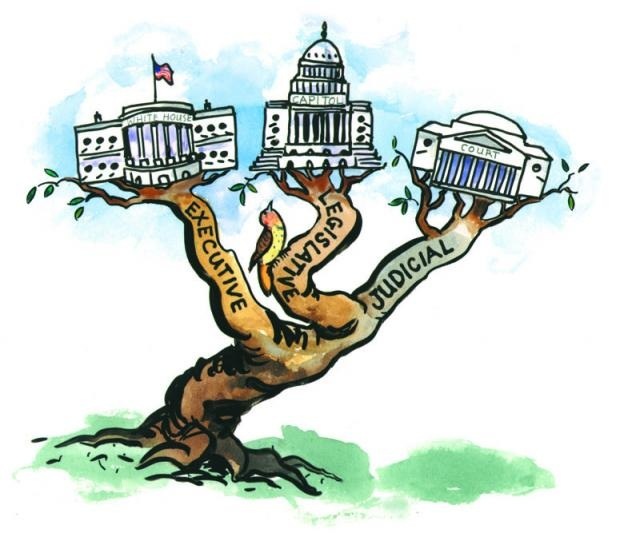Legislative cilpart clever andrew. 3 clipart branch