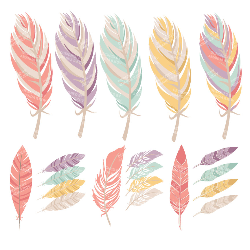3 clipart feather. Fabulous floral feathers graphic