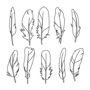 3 clipart feather. Boho tribal bird drawings