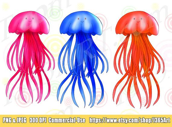 Clip art sea life. 3 clipart jellyfish