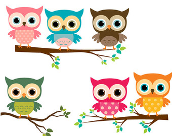 Of station . 3 clipart owl