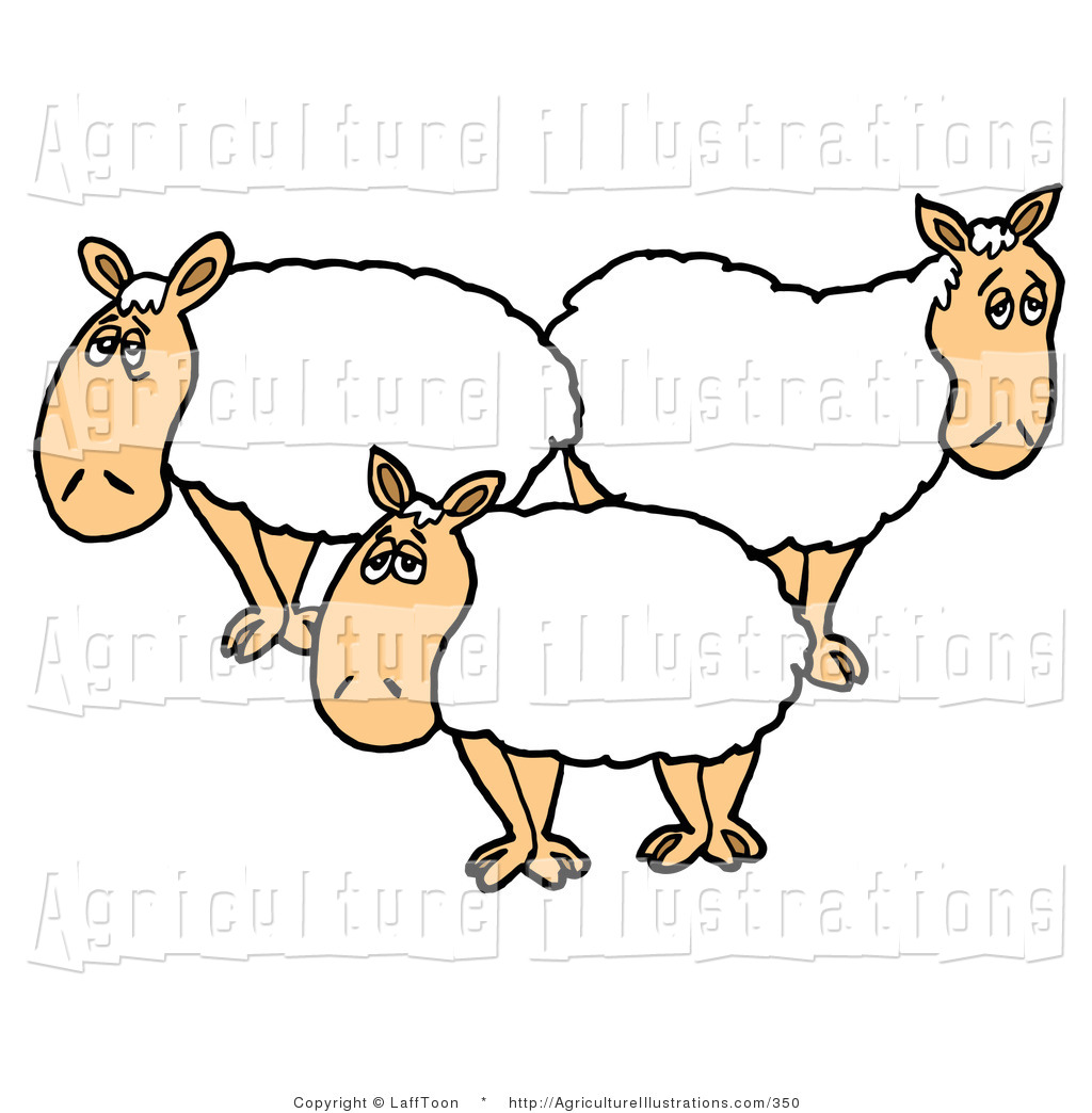 3 clipart sheep. Royalty free stock agriculture