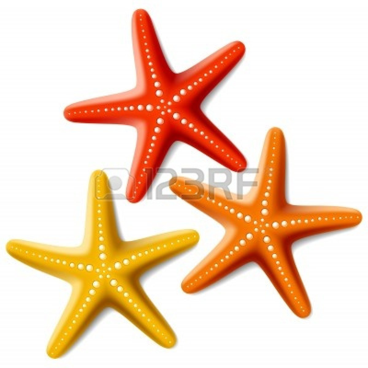 3 clipart starfish. Cute panda free images