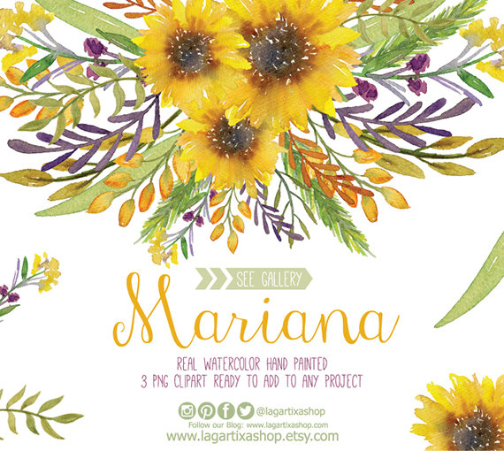 Watercolor floral frame png. 3 clipart sunflower