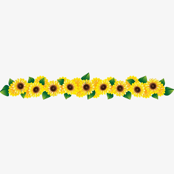 A row of beautiful. 3 clipart sunflower