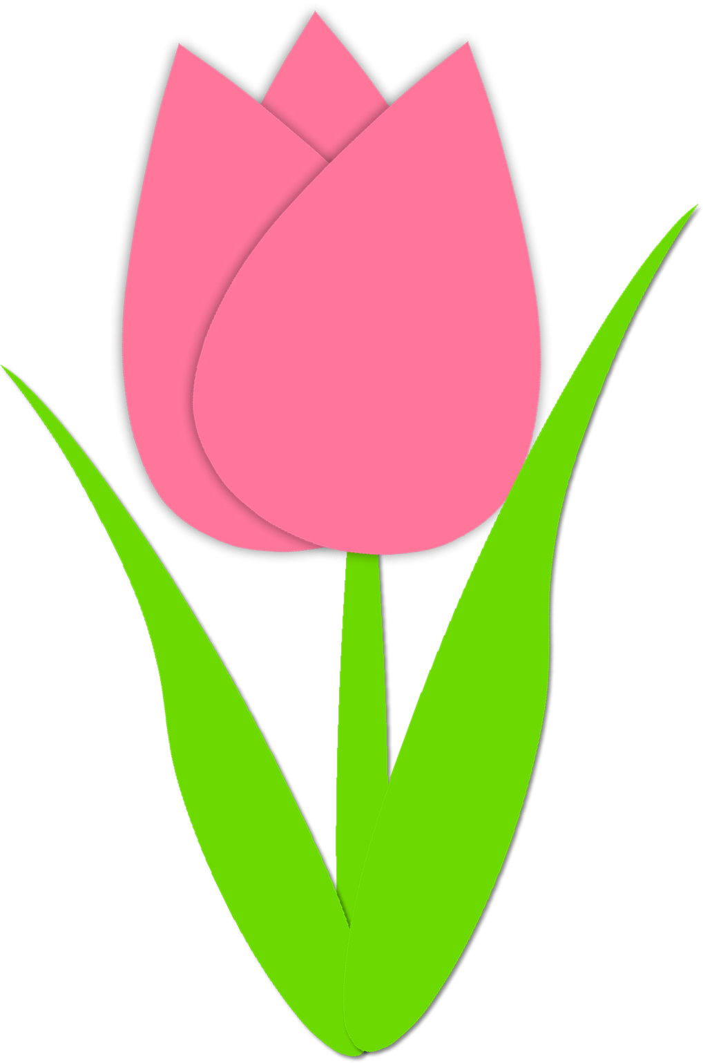 Pink and yellow tulip. Clipart pencil template