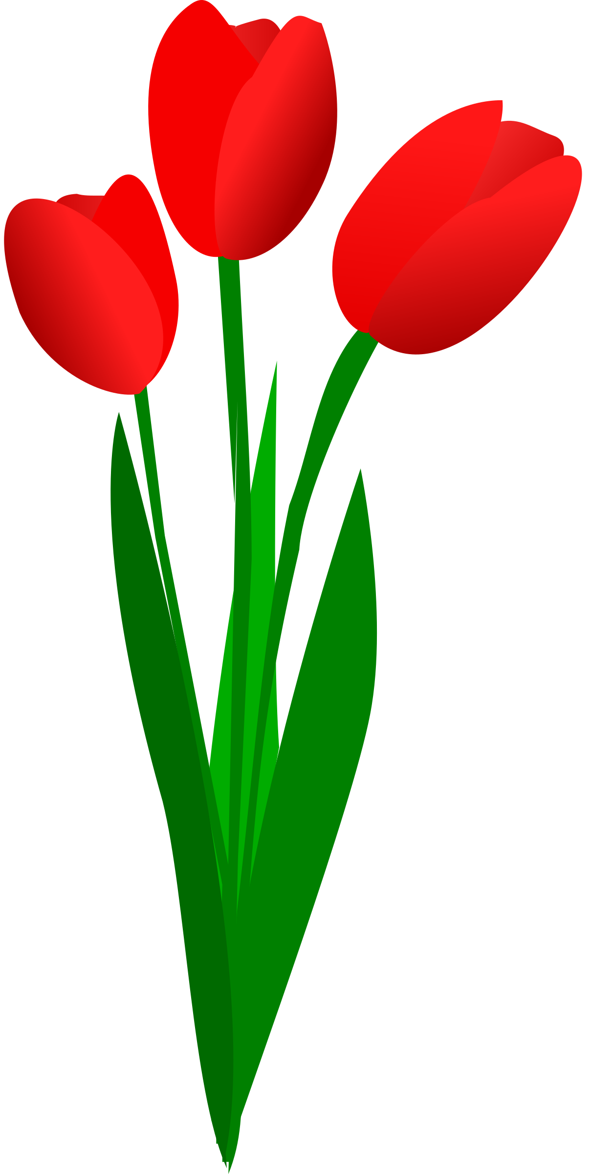 3 clipart tulip. Red images group three