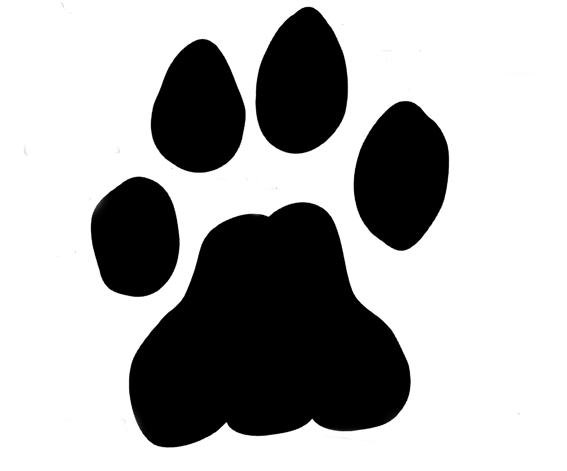 Paw print kid clipartix. Bobcat clipart lion