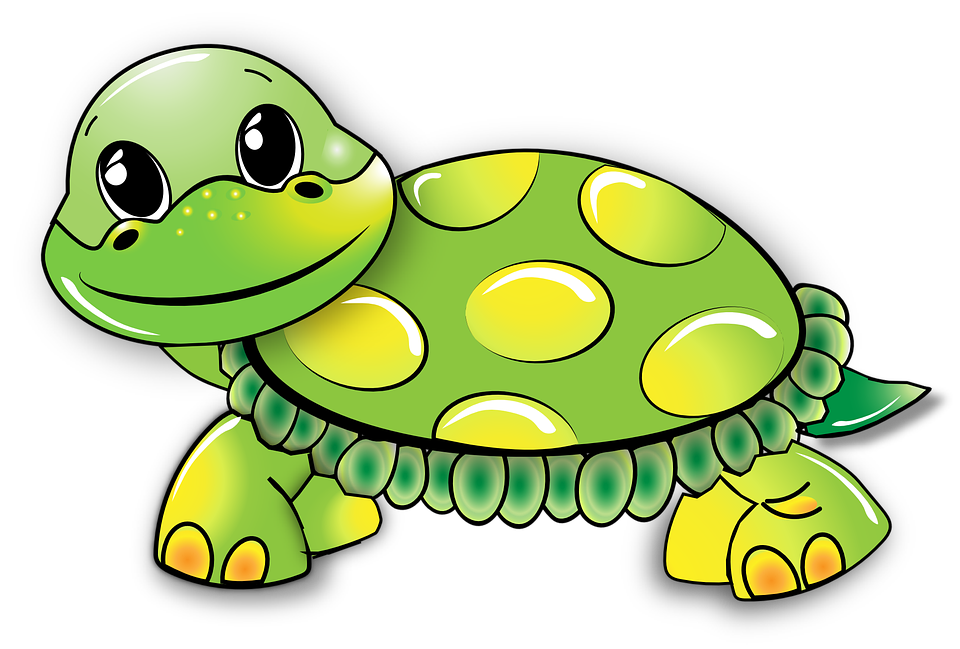 4 clipart turtle. Images shop of cliparts
